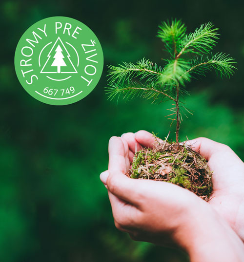 stromy_1