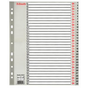 Plastový rozraďovač Esselte 1-31 maxi sivý