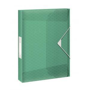 Plastový box s gumičkou Esselte Coulour'Ice zelený