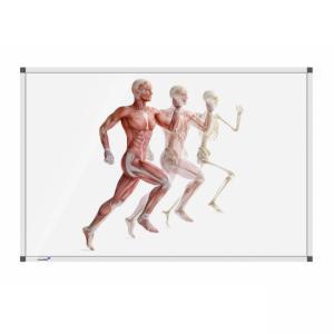 Tabuľa Premium 100x200 cm, ľudské telo v behu