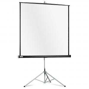 Prenosné plátno Professional 1:1 244x244cm