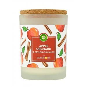 Vonná sviečka Essential Oils - Jablkový Sad & Cejlónska škorica 185g